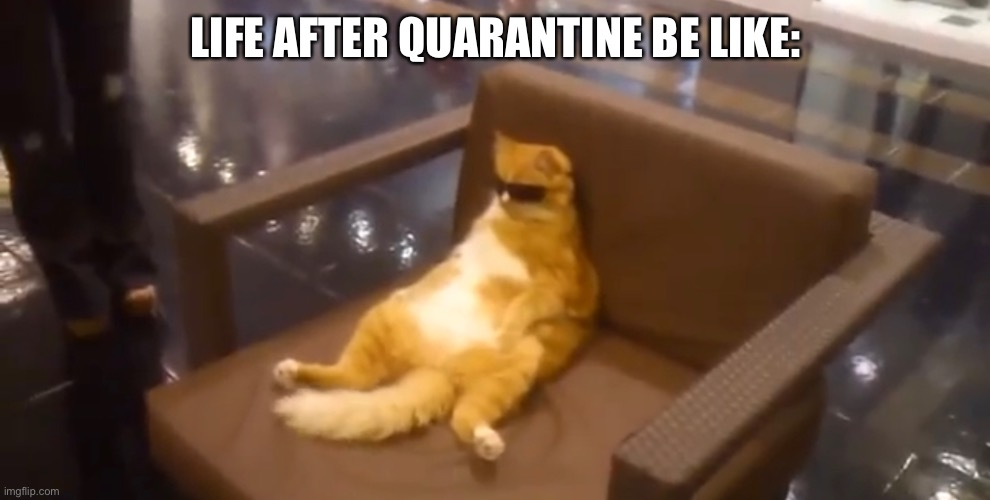 Life after quarantine be like: or during does not matter |  LIFE AFTER QUARANTINE BE LIKE: | image tagged in coronavirus | made w/ Imgflip meme maker