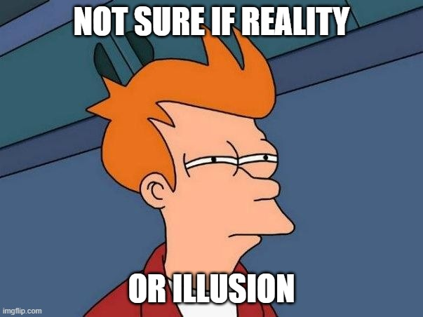 Not sure if Reality or Illusion |  NOT SURE IF REALITY; OR ILLUSION | image tagged in not sure if- fry | made w/ Imgflip meme maker
