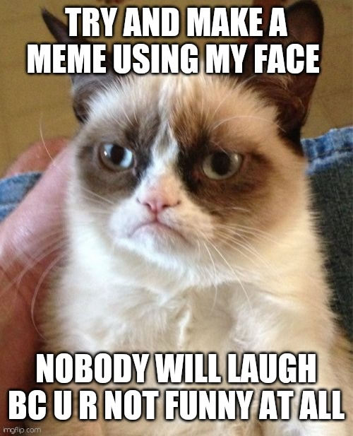 I dare u 2 laff |  TRY AND MAKE A MEME USING MY FACE; NOBODY WILL LAUGH BC U R NOT FUNNY AT ALL | image tagged in memes,grumpy cat,not funny | made w/ Imgflip meme maker