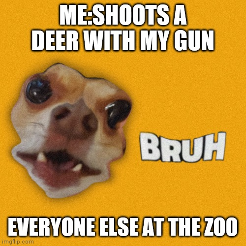 Bruh |  ME:SHOOTS A DEER WITH MY GUN; EVERYONE ELSE AT THE ZOO | image tagged in bruh | made w/ Imgflip meme maker