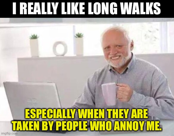 Harold |  I REALLY LIKE LONG WALKS; ESPECIALLY WHEN THEY ARE TAKEN BY PEOPLE WHO ANNOY ME. | image tagged in harold | made w/ Imgflip meme maker