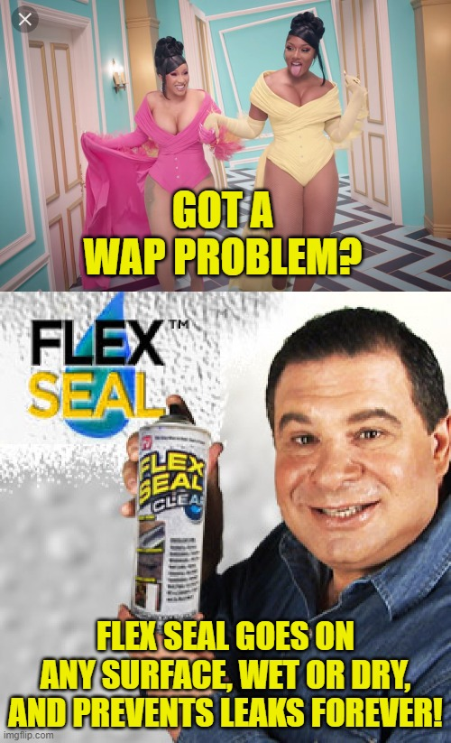 Got a WAP? |  GOT A WAP PROBLEM? FLEX SEAL GOES ON ANY SURFACE, WET OR DRY, AND PREVENTS LEAKS FOREVER! | image tagged in flex seal,wap | made w/ Imgflip meme maker
