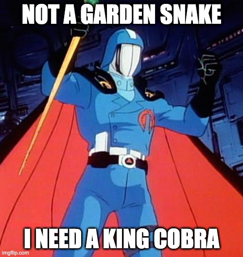 I need a king cobra |  NOT A GARDEN SNAKE; I NEED A KING COBRA | image tagged in cardi b,gijoe,wap | made w/ Imgflip meme maker