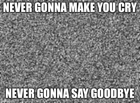 static | NEVER GONNA MAKE YOU CRY NEVER GONNA SAY GOODBYE | image tagged in static | made w/ Imgflip meme maker