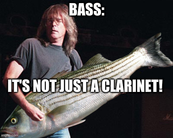 bass clarinet |  BASS:; IT'S NOT JUST A CLARINET! | image tagged in bass guitar pun | made w/ Imgflip meme maker