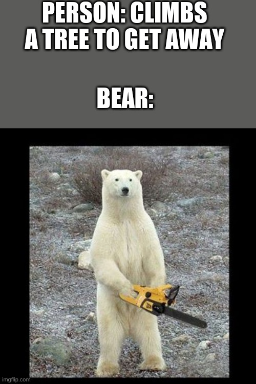 Chainsaw Bear Meme | PERSON: CLIMBS A TREE TO GET AWAY BEAR: | image tagged in memes,chainsaw bear | made w/ Imgflip meme maker