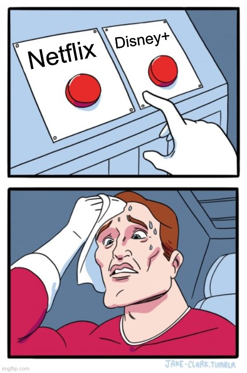 Which one? |  Disney+; Netflix | image tagged in memes,two buttons | made w/ Imgflip meme maker