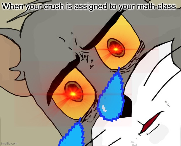 WHY!!! |  When your crush is assigned to your math class | image tagged in memes,unsettled tom | made w/ Imgflip meme maker