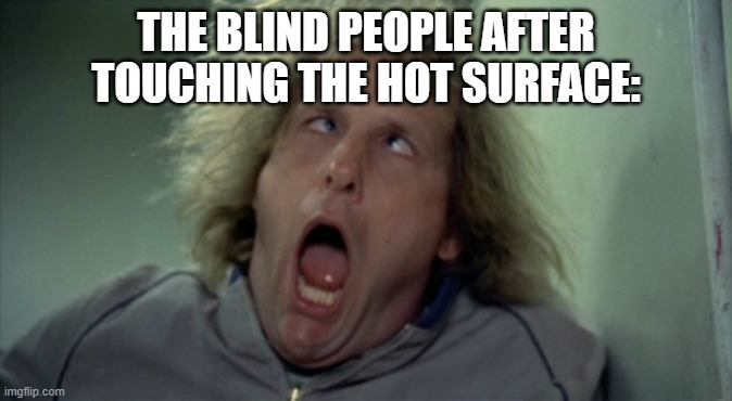 Scary Harry Meme | THE BLIND PEOPLE AFTER TOUCHING THE HOT SURFACE: | image tagged in memes,scary harry | made w/ Imgflip meme maker