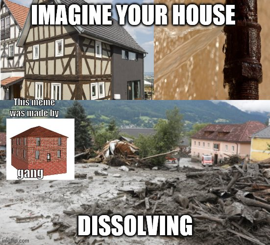 brick house gang |  IMAGINE YOUR HOUSE; This meme was made by; gang; DISSOLVING | image tagged in brick | made w/ Imgflip meme maker