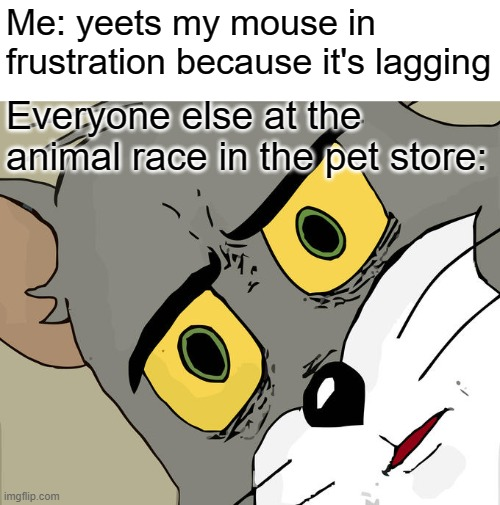 Unsettled Tom Meme |  Me: yeets my mouse in frustration because it's lagging; Everyone else at the animal race in the pet store: | image tagged in memes,unsettled tom | made w/ Imgflip meme maker
