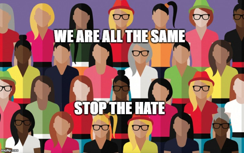 save the usa |  WE ARE ALL THE SAME; STOP THE HATE | image tagged in haters gonna hate | made w/ Imgflip meme maker