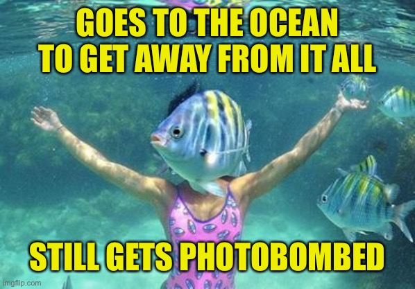 Lose - Lose |  GOES TO THE OCEAN TO GET AWAY FROM IT ALL; STILL GETS PHOTOBOMBED | image tagged in get away,photobombed | made w/ Imgflip meme maker