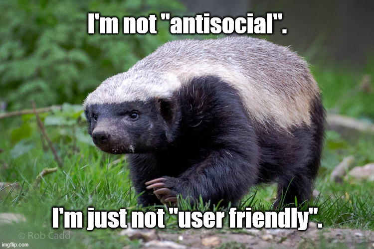 "antisocial honey badger |  I'm not ""antisocial"". I'm just not ""user friendly"". 