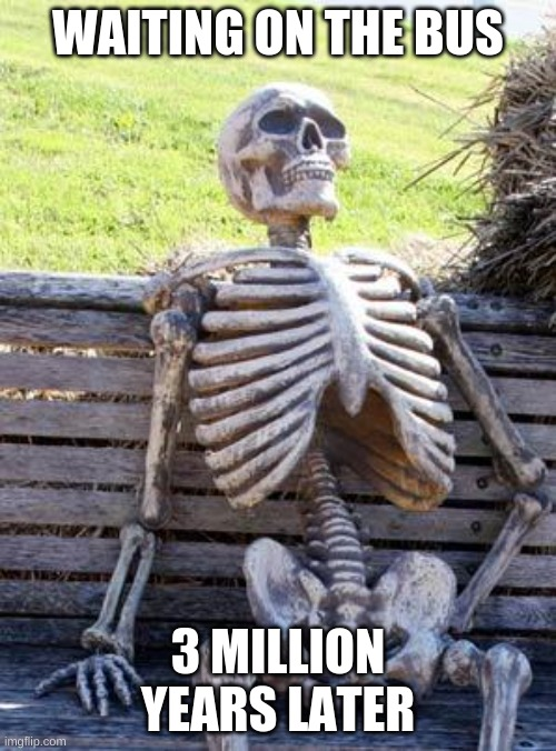 uniuqeE |  WAITING ON THE BUS; 3 MILLION YEARS LATER | image tagged in memes,waiting skeleton | made w/ Imgflip meme maker