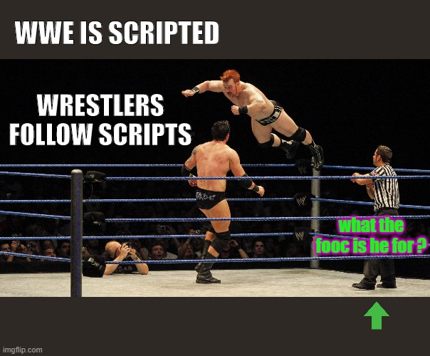 wrestling referees make all those weird gestures? |  WWE IS SCRIPTED; WRESTLERS FOLLOW SCRIPTS; what the fooc is he for ? | image tagged in wrestling,referee,wwe,wtf,why,when you realize | made w/ Imgflip meme maker