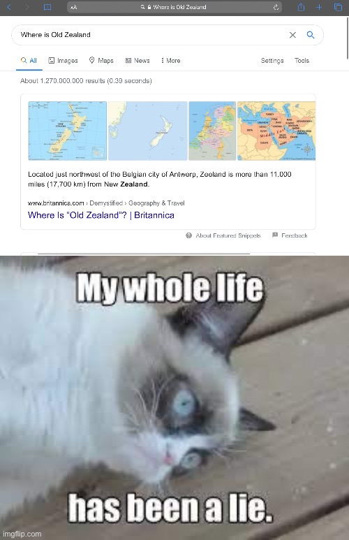 Lies… | image tagged in zealand,old,cat,lies,meme,dank | made w/ Imgflip meme maker