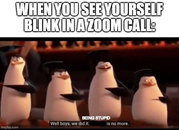 You know when you blink, but can't see yourself blink? |  WHEN YOU SEE YOURSELF BLINK IN A ZOOM CALL:; BEING STUPID | image tagged in well boys we did it blank is no more | made w/ Imgflip meme maker