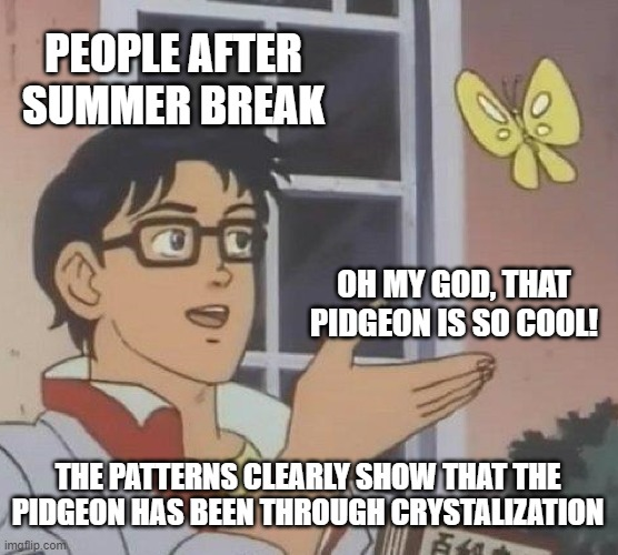 people after summer break |  PEOPLE AFTER SUMMER BREAK; OH MY GOD, THAT PIDGEON IS SO COOL! THE PATTERNS CLEARLY SHOW THAT THE PIDGEON HAS BEEN THROUGH CRYSTALIZATION | image tagged in memes,is this a pigeon | made w/ Imgflip meme maker