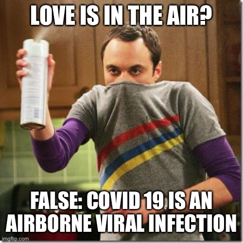 air freshener sheldon cooper |  LOVE IS IN THE AIR? FALSE: COVID 19 IS AN AIRBORNE VIRAL INFECTION | image tagged in air freshener sheldon cooper,coronavirus,corona virus,covid19,covidiots,corona | made w/ Imgflip meme maker
