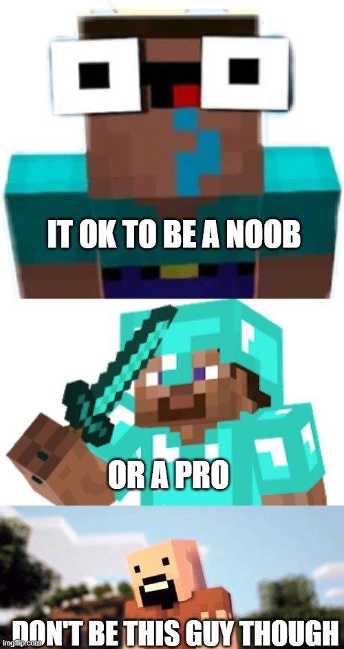 noob v pro v notch |  IT OK TO BE A NOOB; OR A PRO; DON'T BE THIS GUY THOUGH | image tagged in minecraft | made w/ Imgflip meme maker