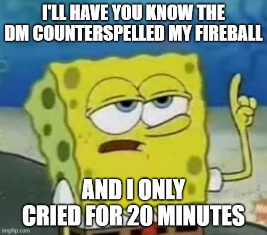 I'll Have You Know Spongebob |  I'LL HAVE YOU KNOW THE DM COUNTERSPELLED MY FIREBALL; AND I ONLY CRIED FOR 20 MINUTES | image tagged in memes,i'll have you know spongebob | made w/ Imgflip meme maker