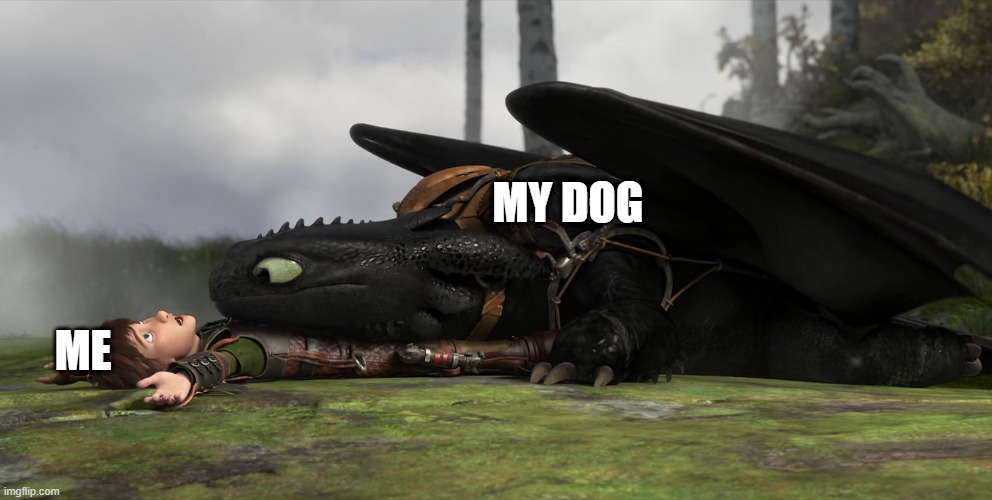 Big Dogs |  MY DOG; ME | image tagged in memes | made w/ Imgflip meme maker