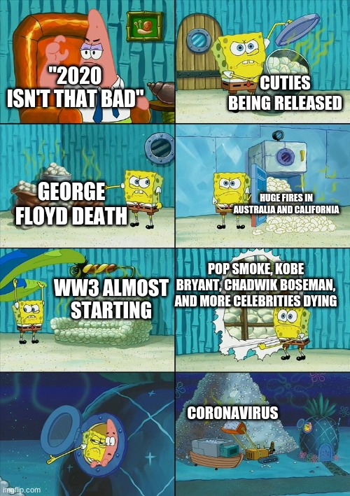"2020 was NOT fine |  CUTIES BEING RELEASED; ""2020 ISN'T THAT BAD""; GEORGE FLOYD DEATH; HUGE FIRES IN AUSTRALIA AND CALIFORNIA; POP SMOKE, KOBE BRYANT, CHADWIK BOSEMAN, AND MORE CELEBRITIES DYING; WW3 ALMOST STARTING; CORONAVIRUS 