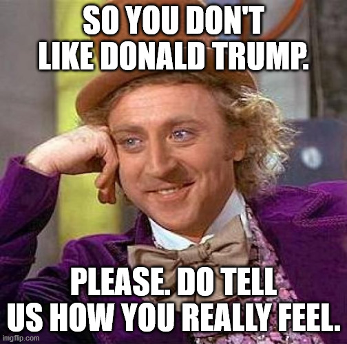 SO YOU DON'T LIKE DONALD TRUMP. PLEASE. DO TELL US HOW YOU REALLY FEEL. | image tagged in memes,creepy condescending wonka | made w/ Imgflip meme maker