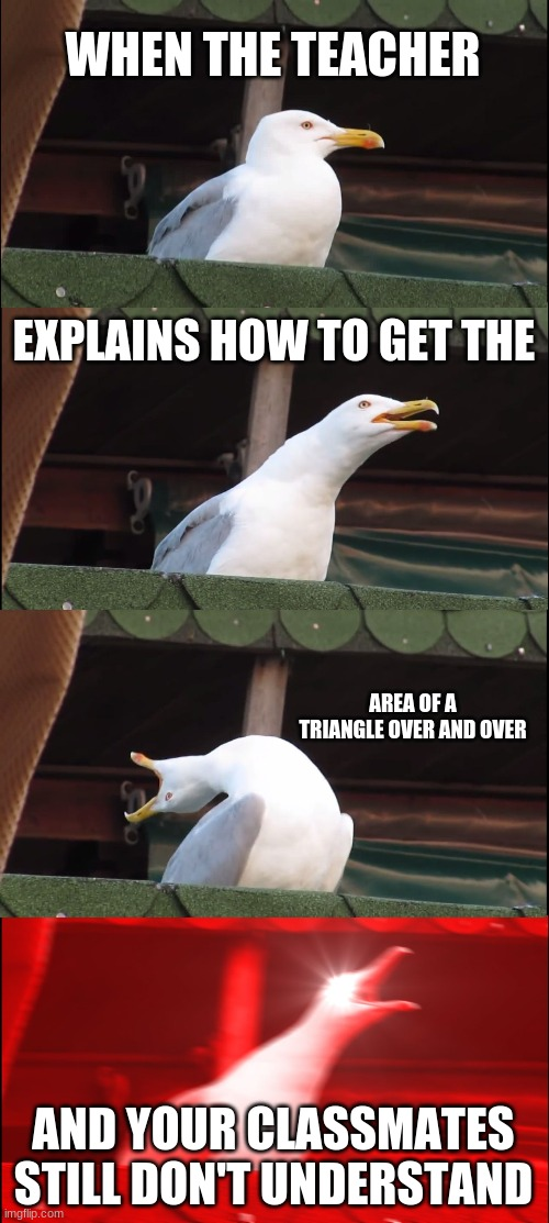 When the teacher... |  WHEN THE TEACHER; EXPLAINS HOW TO GET THE; AREA OF A TRIANGLE OVER AND OVER; AND YOUR CLASSMATES STILL DON'T UNDERSTAND | image tagged in memes,inhaling seagull,school,triangle,area,ugh | made w/ Imgflip meme maker