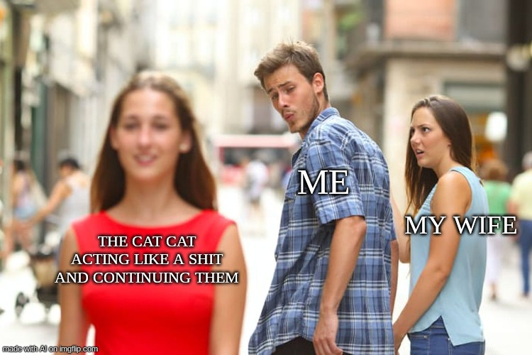 Distracted Boyfriend Meme |  ME; MY WIFE; THE CAT CAT ACTING LIKE A SHIT AND CONTINUING THEM | image tagged in memes,distracted boyfriend | made w/ Imgflip meme maker