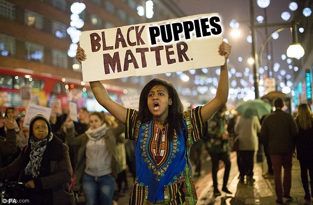 Black lies matter | PUPPIES | image tagged in black lies matter | made w/ Imgflip meme maker