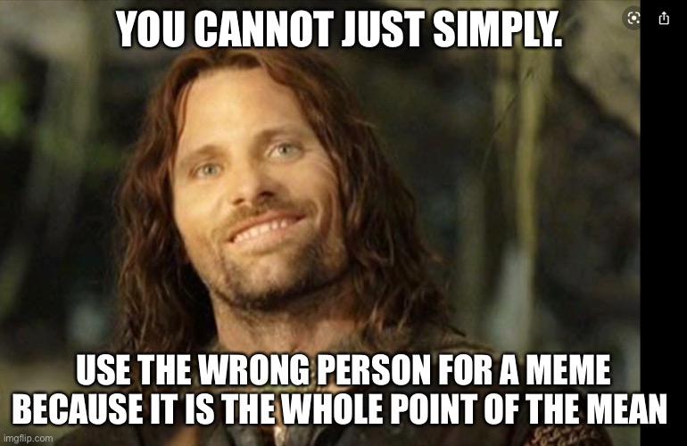 You can just simply |  YOU CANNOT JUST SIMPLY. USE THE WRONG PERSON FOR A MEME BECAUSE IT IS THE WHOLE POINT OF THE MEAN | image tagged in one does not simply,aragorn,funny,lotr,fails,funny memes | made w/ Imgflip meme maker