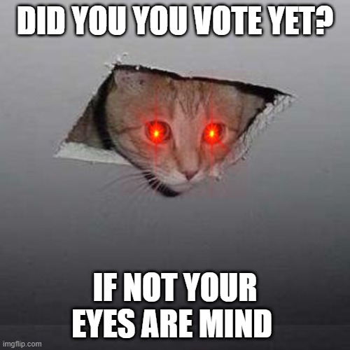 vote cat |  DID YOU YOU VOTE YET? IF NOT YOUR EYES ARE MIND | image tagged in memes,ceiling cat | made w/ Imgflip meme maker