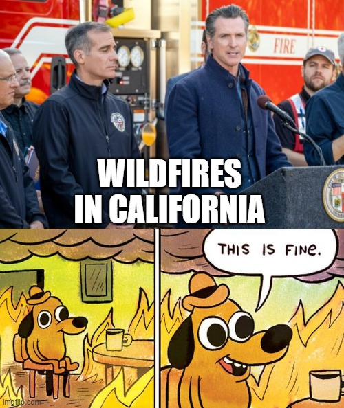 california wildfires |  WILDFIRES IN CALIFORNIA | image tagged in gavin newsom,wildfires,dog,this is fine,california,fire | made w/ Imgflip meme maker