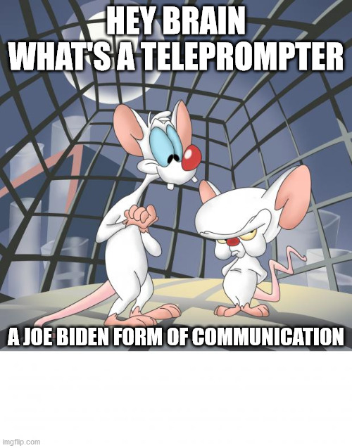 Pinky and the brain |  HEY BRAIN WHAT'S A TELEPROMPTER; A JOE BIDEN FORM OF COMMUNICATION | image tagged in pinky and the brain | made w/ Imgflip meme maker