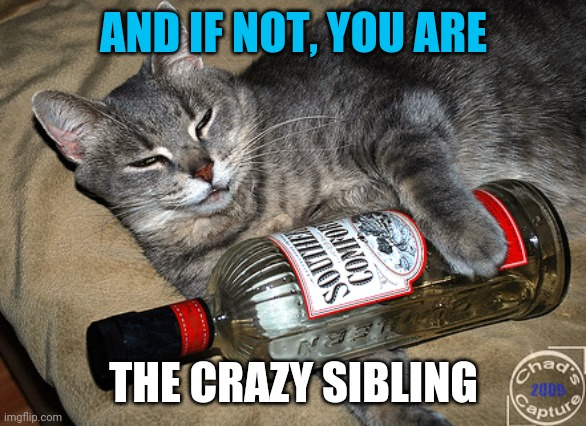 cat and liquor | AND IF NOT, YOU ARE THE CRAZY SIBLING | image tagged in cat and liquor | made w/ Imgflip meme maker