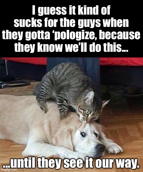 Love Rules |  I guess it kind of sucks for the guys when they gotta 'pologize, because they know we'll do this... ...until they see it our way. | image tagged in funny memes,funny cat memes,funny dog memes | made w/ Imgflip meme maker