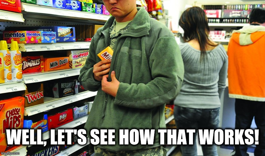 shoplifting | WELL, LET'S SEE HOW THAT WORKS! | image tagged in shoplifting | made w/ Imgflip meme maker