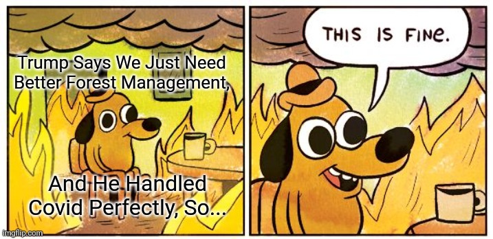Trump Can Solve Everything |  Trump Says We Just Need Better Forest Management, And He Handled Covid Perfectly, So... | image tagged in memes,this is fine,trump,forest management,wildfires | made w/ Imgflip meme maker
