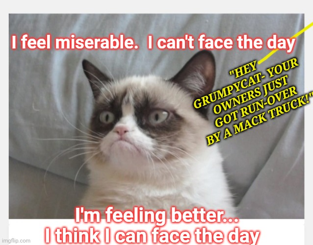 "He is so Grumpy |  ""HEY GRUMPYCAT- YOUR OWNERS JUST GOT RUN-OVER BY A MACK TRUCK!""; I feel miserable.  I can't face the day; I'm feeling better... I think I can face the day 