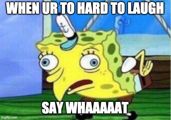 WHEN UR TO HARD TO LAUGH SAY WHAAAAAT | image tagged in memes,mocking spongebob | made w/ Imgflip meme maker