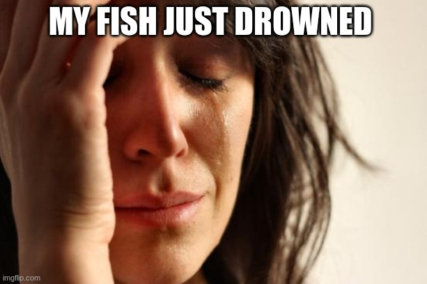 First World Problems |  MY FISH JUST DROWNED | image tagged in memes,first world problems | made w/ Imgflip meme maker