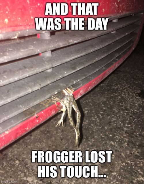 frogger lost |  AND THAT WAS THE DAY; FROGGER LOST HIS TOUCH... | image tagged in gameover,frogger | made w/ Imgflip meme maker