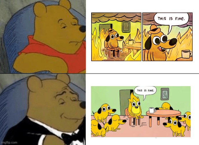 Lolololol | image tagged in memes,tuxedo winnie the pooh,this is fine | made w/ Imgflip meme maker