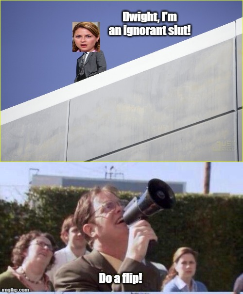 Dwight, I'm an ignorant slut! Do a flip! | image tagged in funny | made w/ Imgflip meme maker