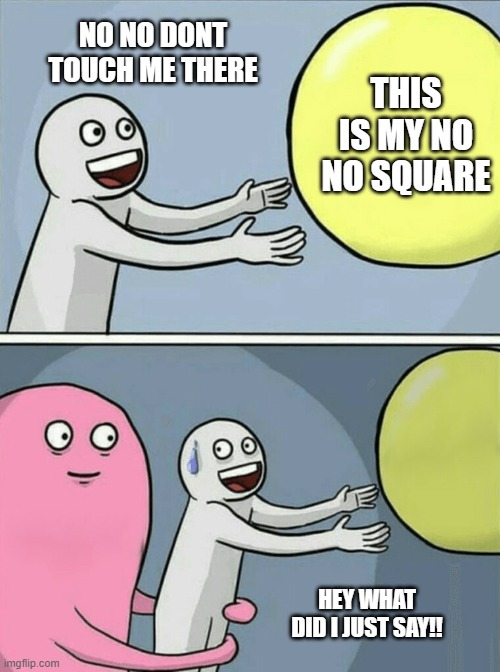 no no square |  NO NO DONT TOUCH ME THERE; THIS IS MY NO NO SQUARE; HEY WHAT DID I JUST SAY!! | image tagged in memes,running away balloon | made w/ Imgflip meme maker