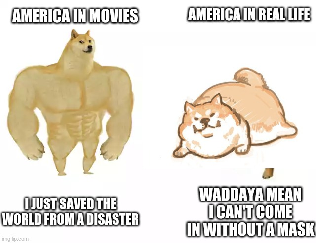 As an American myself I can assure this is partially true |  AMERICA IN REAL LIFE; AMERICA IN MOVIES; I JUST SAVED THE WORLD FROM A DISASTER; WADDAYA MEAN I CAN'T COME IN WITHOUT A MASK | image tagged in america,buff doge vs cheems,face mask | made w/ Imgflip meme maker