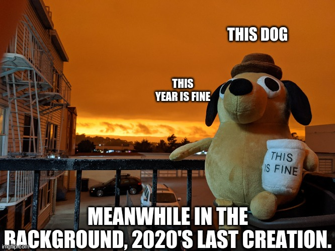 2020 is fin |  THIS DOG; THIS YEAR IS FINE; MEANWHILE IN THE BACKGROUND, 2020'S LAST CREATION. | image tagged in 2020,wildfires,california,this is fine | made w/ Imgflip meme maker