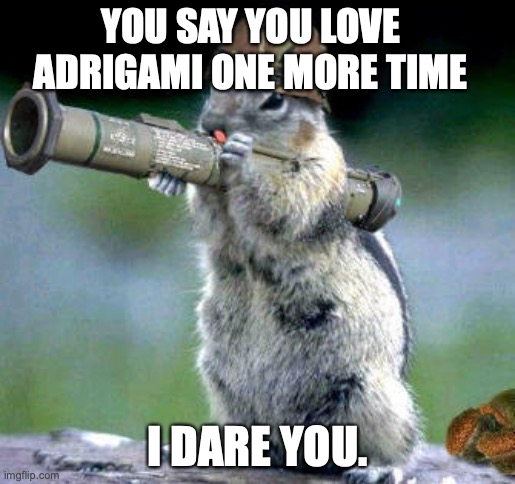 I dare you |  YOU SAY YOU LOVE ADRIGAMI ONE MORE TIME; I DARE YOU. | image tagged in memes,bazooka squirrel,miraculous ladybug | made w/ Imgflip meme maker